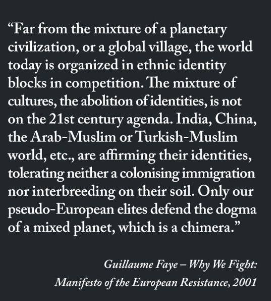 Guillaume Faye, quote Why We Fight